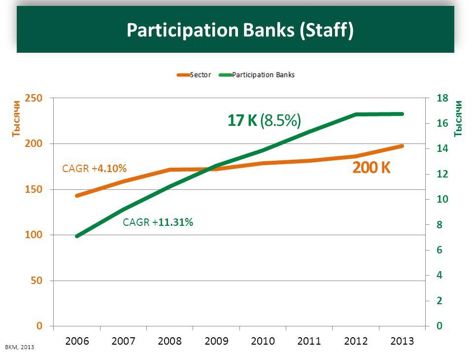 PersonelPersonel - Sektör 20067114143143 20079215158534 200811022171598 200912677172402 201013857178503 201115356181418 201216729186098 201316761197460 CAGR +11.31% CAGR +4.10% 17 K (8.5%) 200 K BKM, 2013 Participation Banks (Staff)