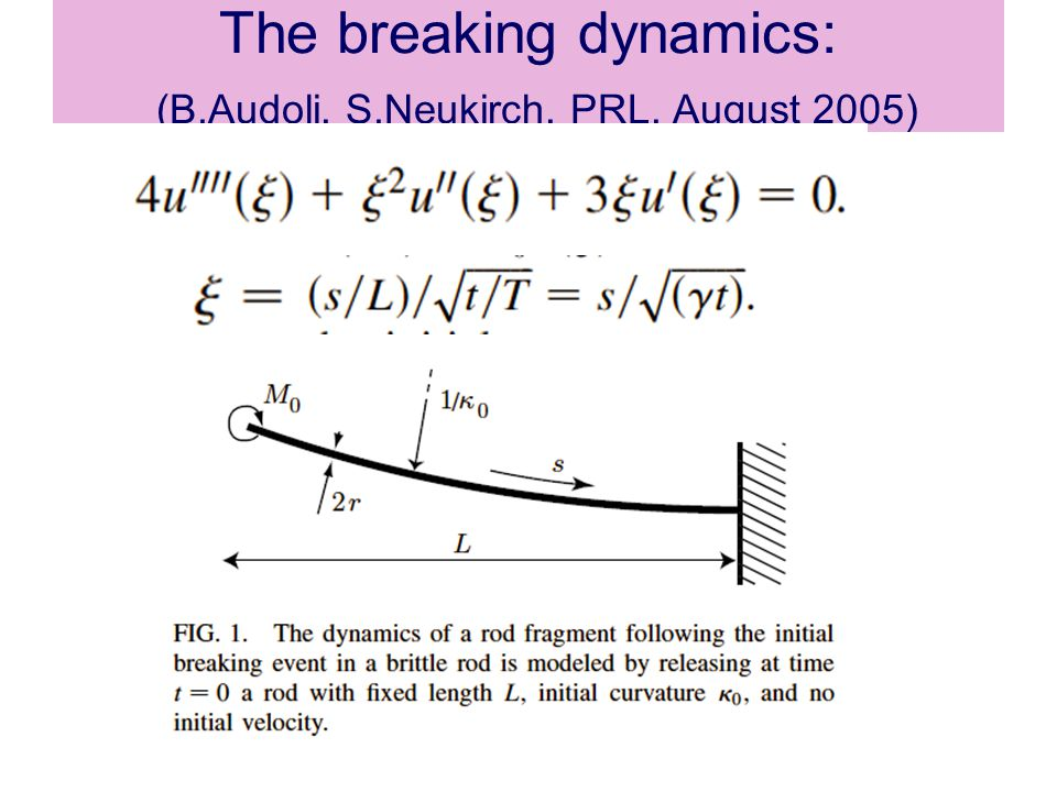 The breaking dynamics: (B.Audoli, S.Neukirch, PRL, August 2005)