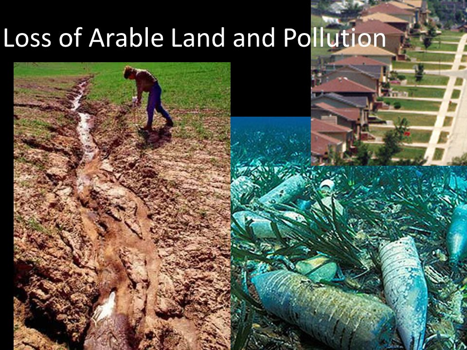 Loss of Arable Land and Pollution