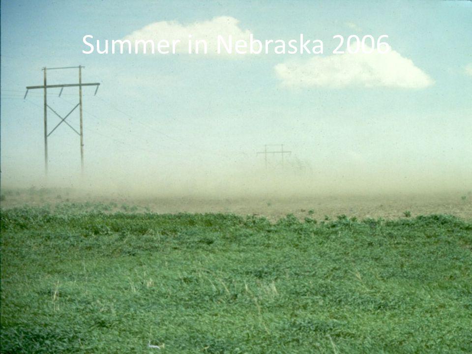 Summer in Nebraska 2006