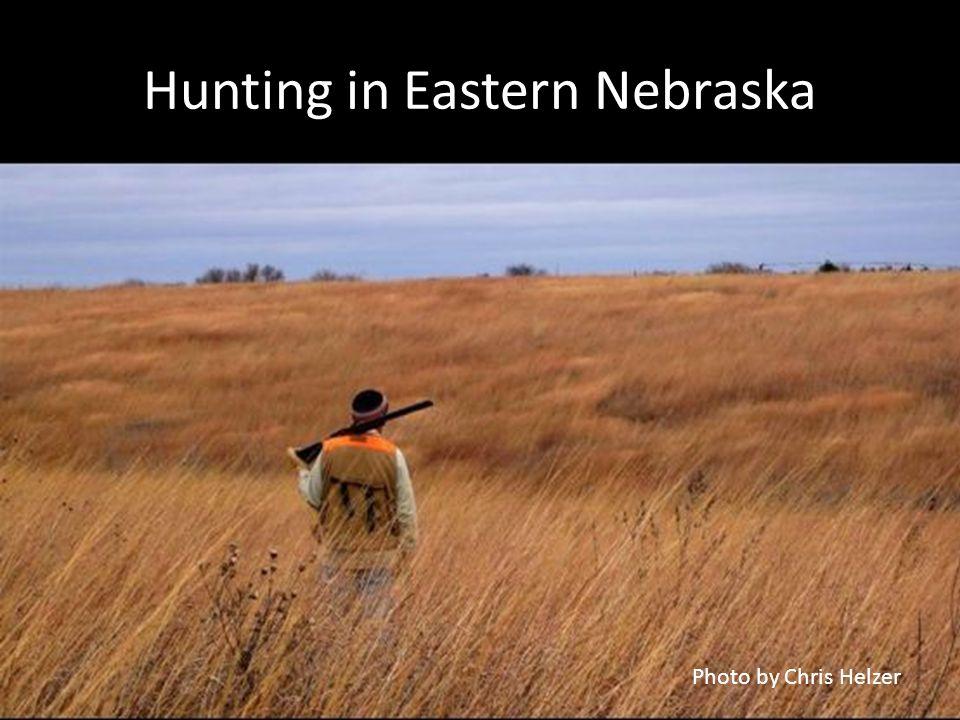 Hunting in Eastern Nebraska Photo by Chris Helzer