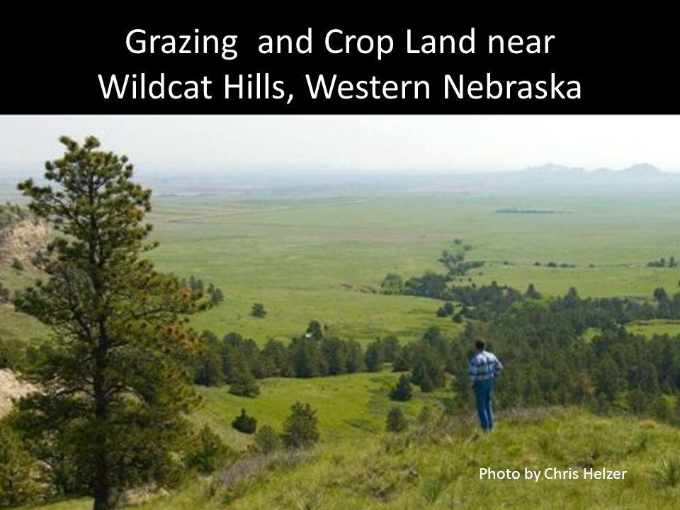 Grazing and Crop Land near Wildcat Hills, Western Nebraska Photo by Chris Helzer
