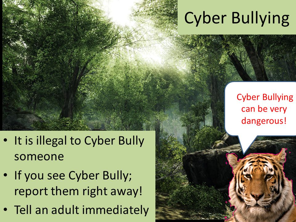 Cyber Bullying It is illegal to Cyber Bully someone If you see Cyber Bully; report them right away.