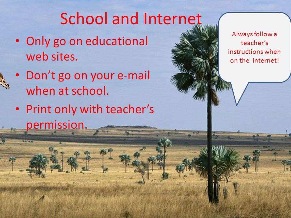 School and Internet Only go on educational web sites.