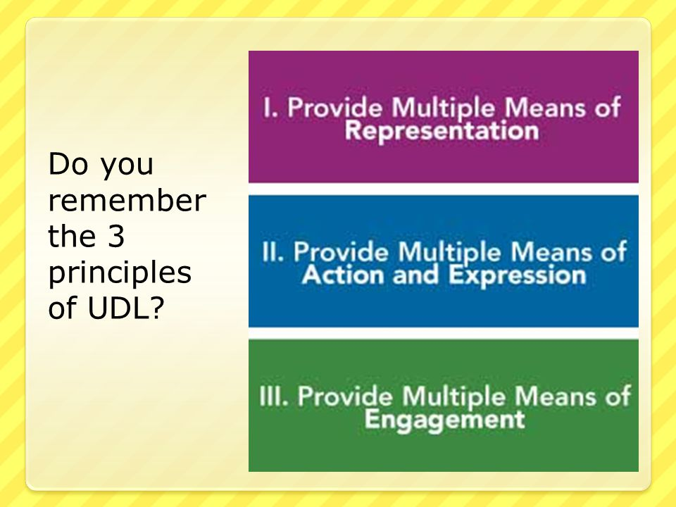 Do you remember the 3 principles of UDL?