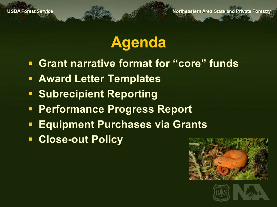 USDA Forest Service Northeastern Area State and Private Forestry New Grant Narrative Format for S&PF Core Funds Sherri Wormstead NA Office of Knowledge Management Sustainability & Planning Coordinator