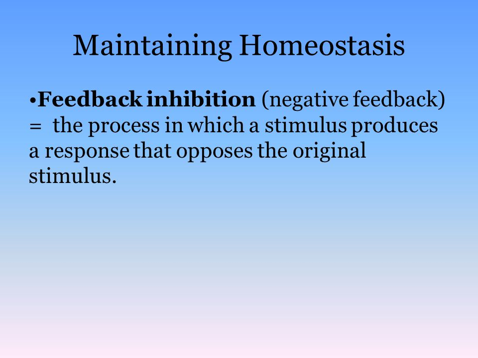 Maintaining Homeostasis An Example of Feedback Inhibition Thermostat senses temperature change and switches off heating system Thermostat senses temperature change and switches on heating system Room temperature increases Room temperature decreases