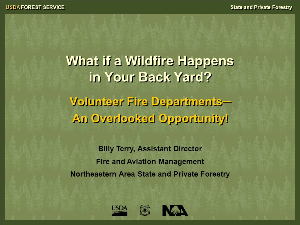 USDA FOREST SERVICEState and Private Forestry What if a Wildfire Happens in Your Back Yard? Volunteer Fire Departments─ An Overlooked Opportunity! Vol