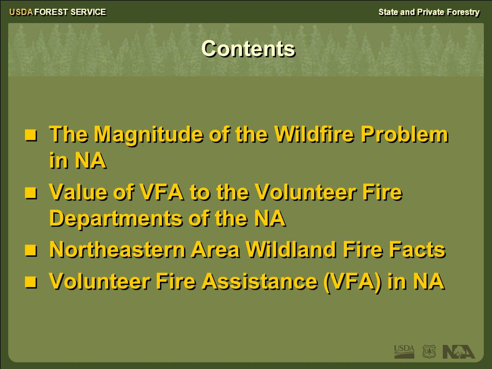 USDA FOREST SERVICEState and Private Forestry Ohio Hazard Mitigation Grant program Assists VFDs in enhancing WUI prevention and preparedness 50/50 matching, cash or in kind 14 grants totaling $26,000 to VFDs in high-hazard areas of the State Hazard Mitigation Grant program Assists VFDs in enhancing WUI prevention and preparedness 50/50 matching, cash or in kind 14 grants totaling $26,000 to VFDs in high-hazard areas of the State