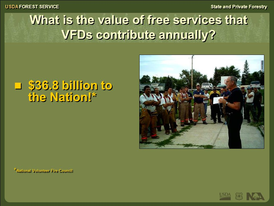 USDA FOREST SERVICEState and Private Forestry Northeast Wildfire Facts The estimated annual savings to Federal, State, and local governments in the Northeast for wildfire suppression provided by VFDs: $687 million The estimated annual savings to Federal, State, and local governments in the Northeast for wildfire suppression provided by VFDs: $687 million