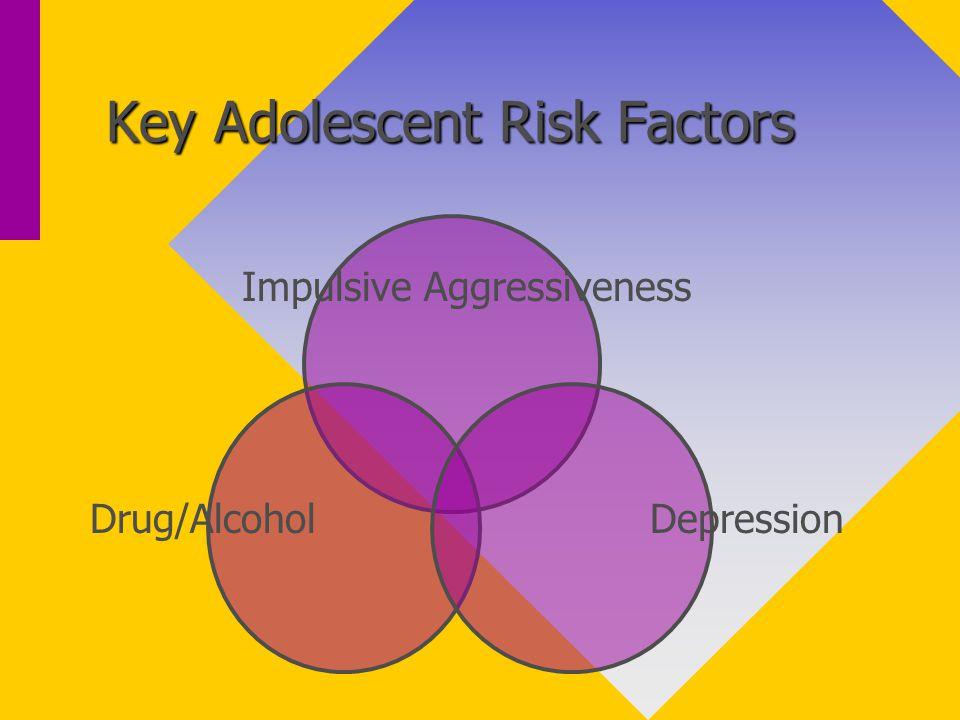 Key Adolescent Risk Factors Impulsive Aggressiveness DepressionDrug/Alcohol