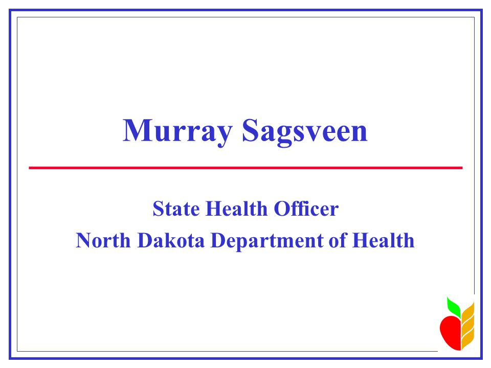 Current Issues  Tobacco legislation  Teen suicide  Access to health care services in rural North Dakota  Partnership between the North Dakota Department of Health and local public health departments  Shaken Baby Syndrome Spring 1998
