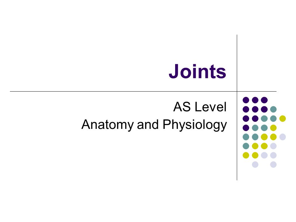Joints AS Level Anatomy and Physiology