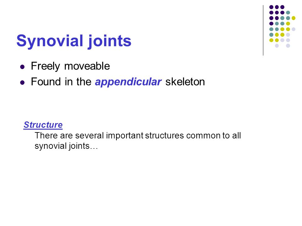 Synovial joints Freely moveable Found in the appendicular skeleton Structure There are several important structures common to all synovial joints…