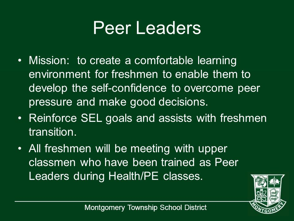 Montgomery Township School District Peer Leaders Mission: to create a comfortable learning environment for freshmen to enable them to develop the self