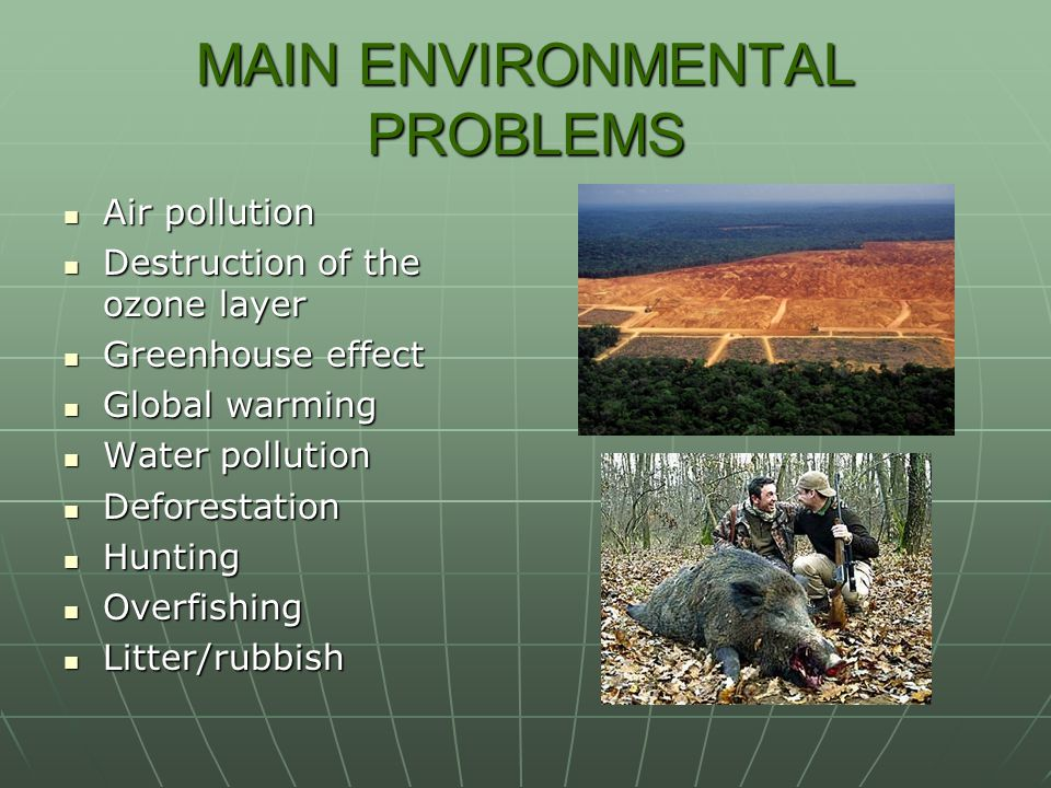 MAIN ENVIRONMENTAL PROBLEMS Air pollution Air pollution Destruction of the ozone layer Destruction of the ozone layer Greenhouse effect Greenhouse effect Global warming Global warming Water pollution Water pollution Deforestation Deforestation Hunting Hunting Overfishing Overfishing Litter/rubbish Litter/rubbish