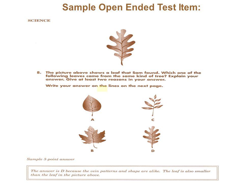 Sample Open Ended Test Item: