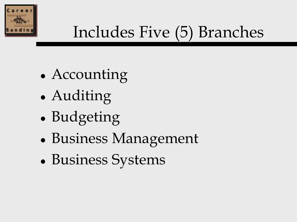 Includes Five (5) Branches Accounting Auditing Budgeting Business Management Business Systems