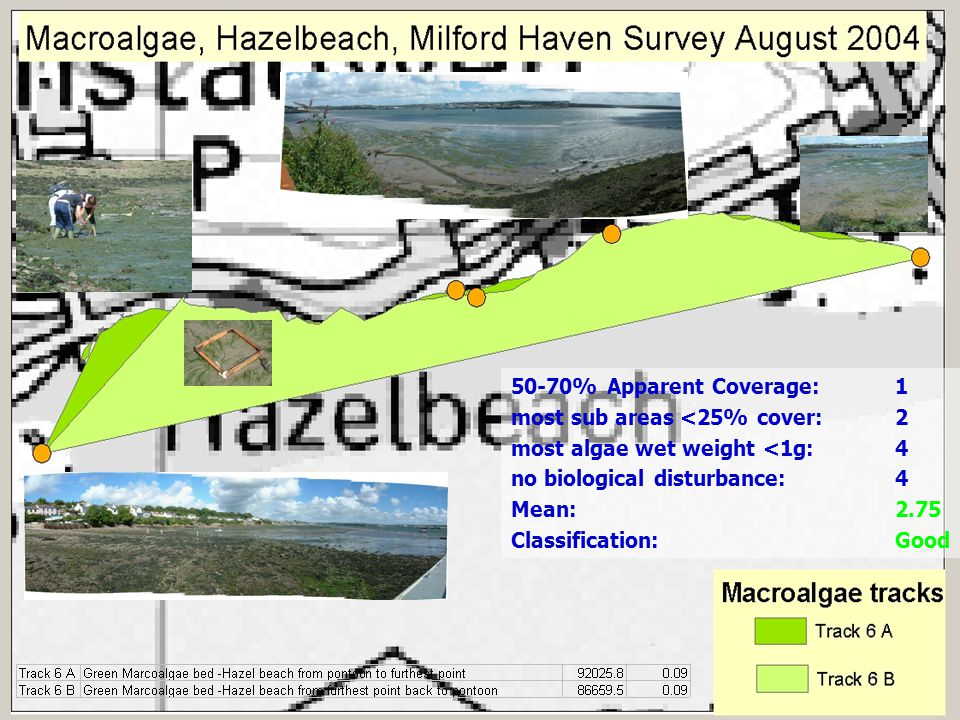 50-70% Apparent Coverage:1 most sub areas <25% cover:2 most algae wet weight <1g:4 no biological disturbance:4 Mean:2.75 Classification:Good