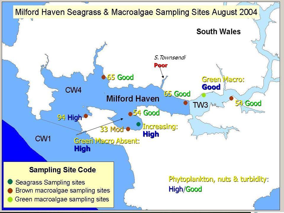 94 High 33 Mod 54 Good Increasing:High 65 Good 54 Good Green Macro: Good S.TownsendiPoor Green Macro Absent: High Phytoplankton, nuts & turbidity: High/Good