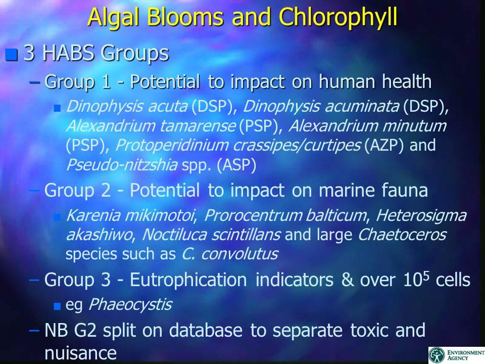 Algal Blooms and Chlorophyll n 3 HABS Groups –Group 1 - Potential to impact on human health n n Dinophysis acuta (DSP), Dinophysis acuminata (DSP), Alexandrium tamarense (PSP), Alexandrium minutum (PSP), Protoperidinium crassipes/curtipes (AZP) and Pseudo-nitzshia spp.