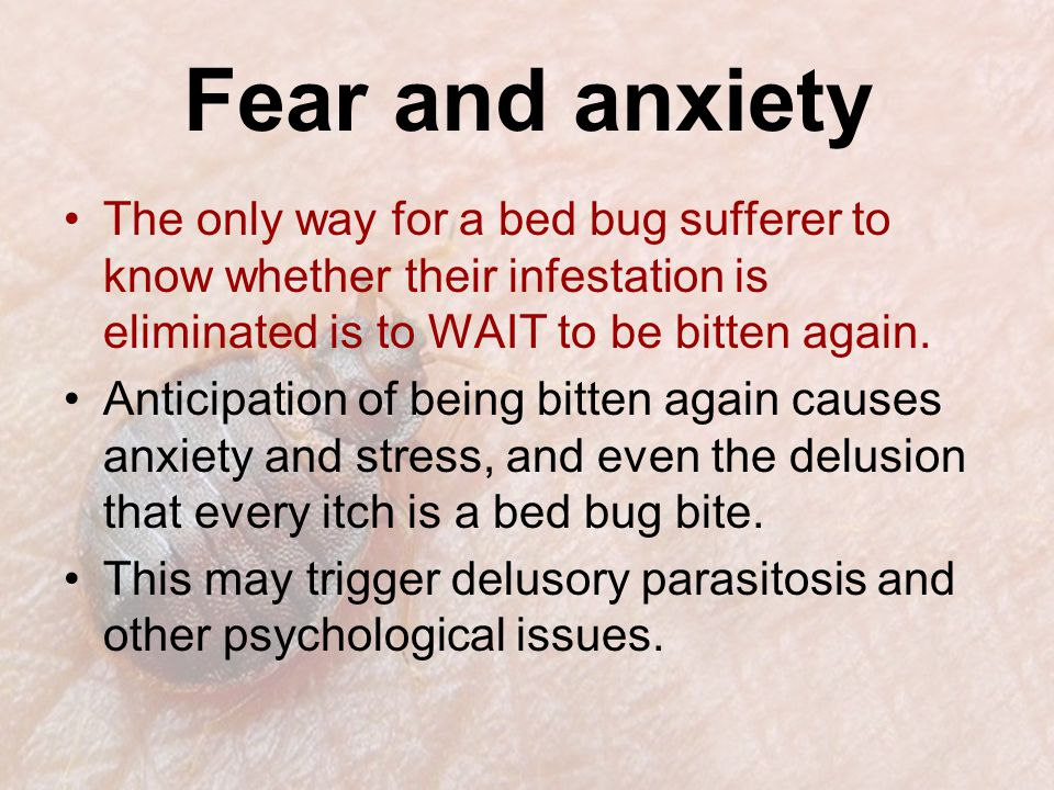Fear and anxiety The only way for a bed bug sufferer to know whether their infestation is eliminated is to WAIT to be bitten again.