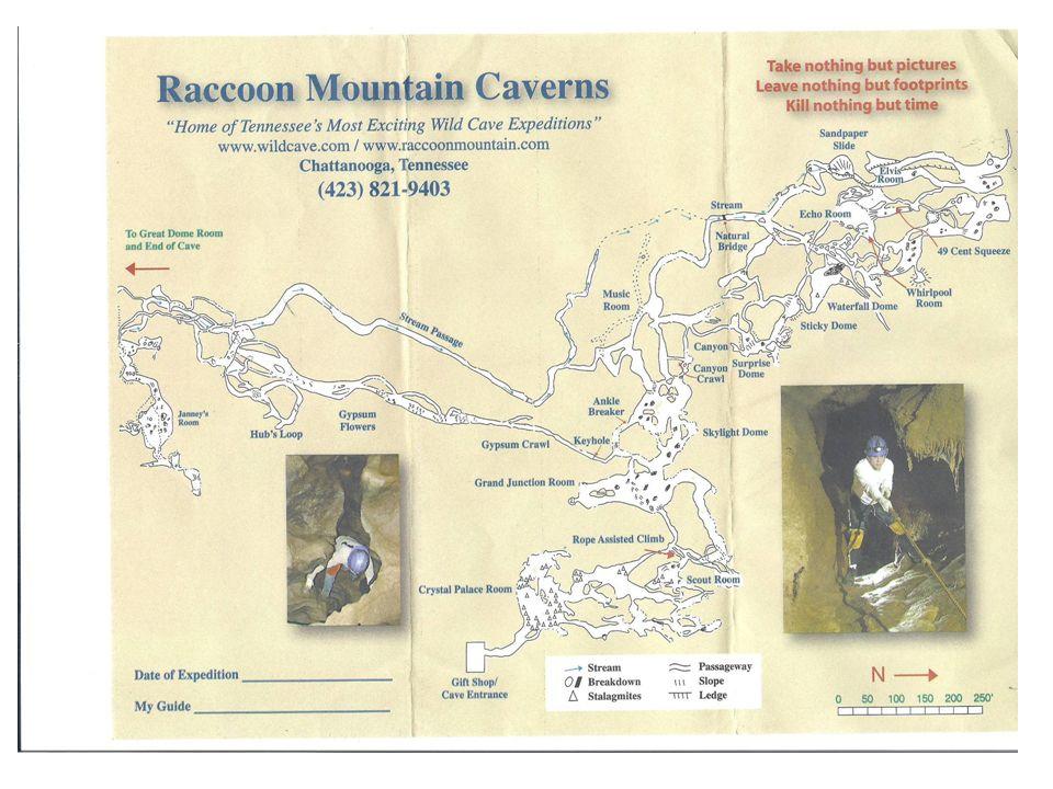 The History Raccoon Mt.