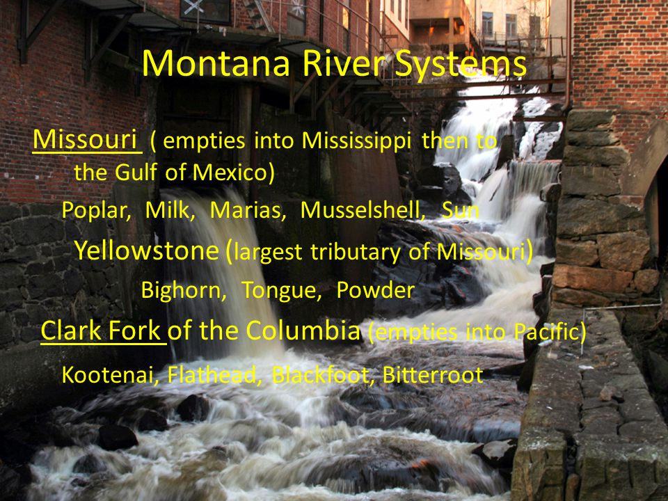 Montana River Systems Missouri ( empties into Mississippi then to the Gulf of Mexico) Poplar, Milk, Marias, Musselshell, Sun Yellowstone ( largest tri