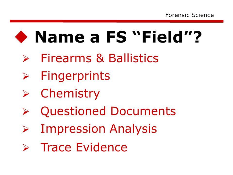  Name a FS Field .