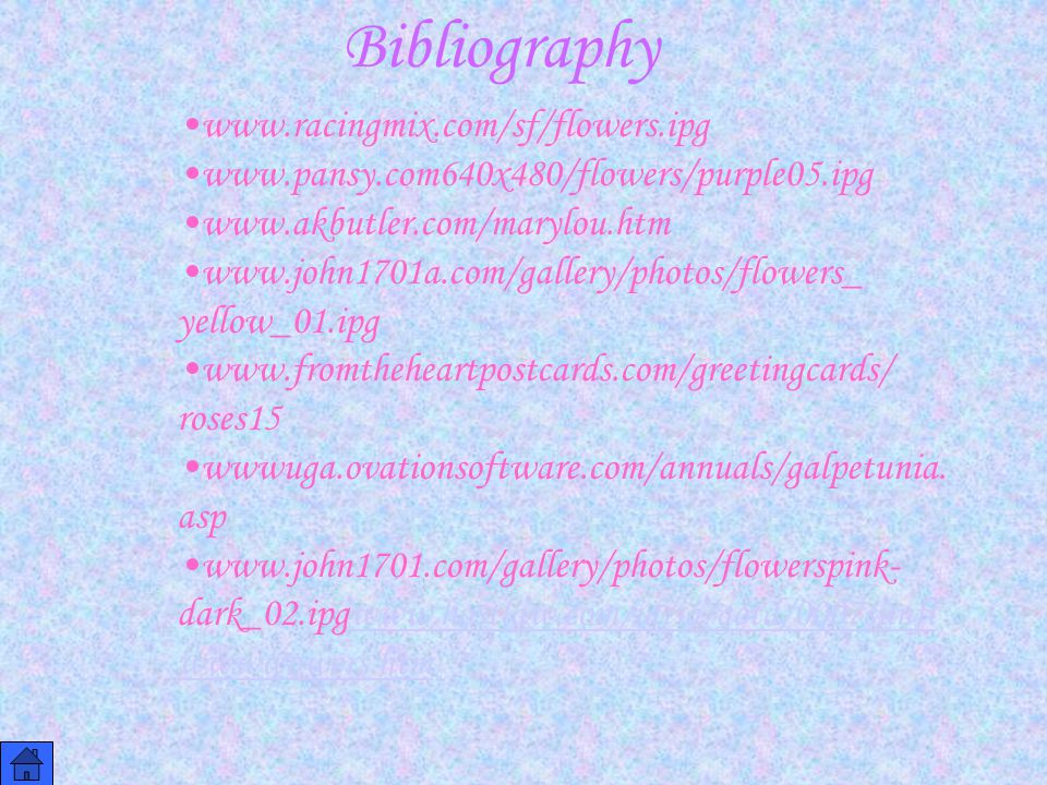 Bibliography www.racingmix.com/sf/flowers.ipg www.pansy.com640x480/flowers/purple05.ipg www.akbutler.com/marylou.htm www.john1701a.com/gallery/photos/flowers_ yellow_01.ipg www.fromtheheartpostcards.com/greetingcards/ roses15 wwwuga.ovationsoftware.com/annuals/galpetunia.