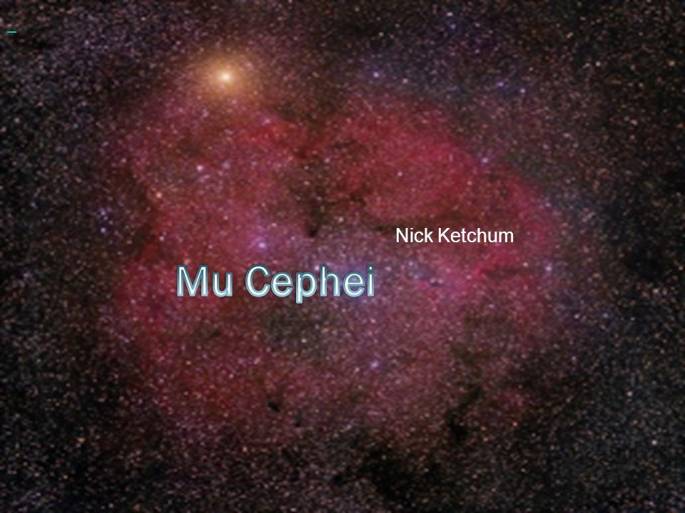 Nick Ketchum