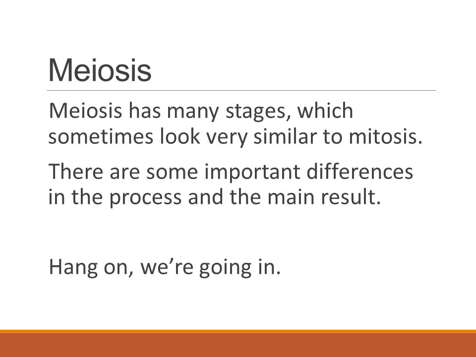 Meiosis Meiosis has many stages, which sometimes look very similar to mitosis. There are some important differences in the process and the main result