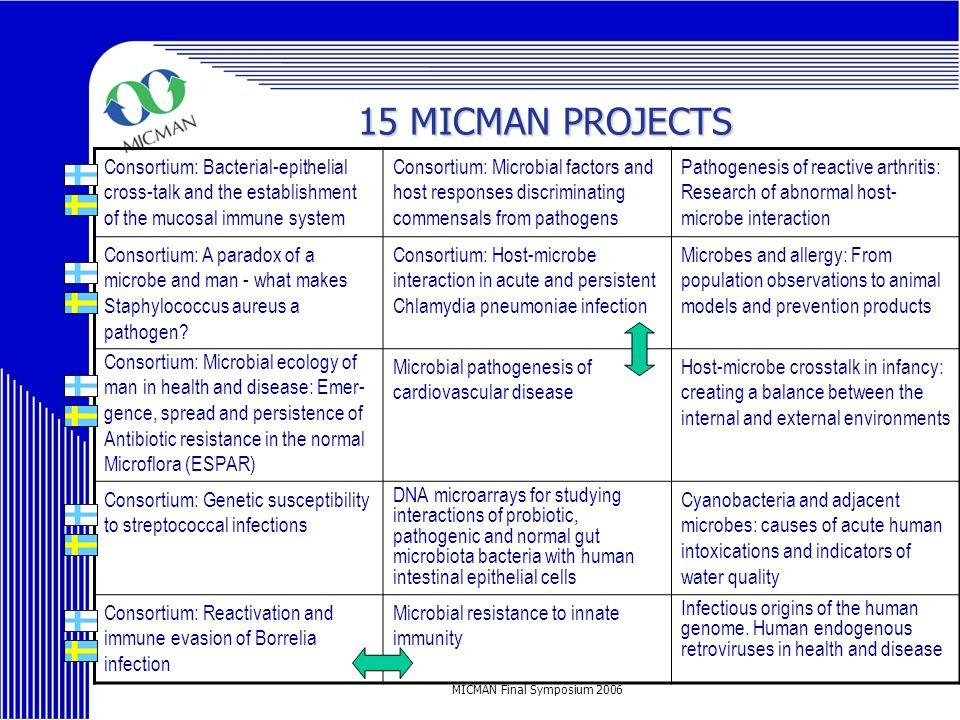 MICMAN Final Symposium 2006 15 MICMAN PROJECTS 15 MICMAN PROJECTS Consortium: Bacterial-epithelial cross-talk and the establishment of the mucosal immune system Consortium: Microbial factors and host responses discriminating commensals from pathogens Pathogenesis of reactive arthritis: Research of abnormal host- microbe interaction Consortium: A paradox of a microbe and man - what makes Staphylococcus aureus a pathogen.