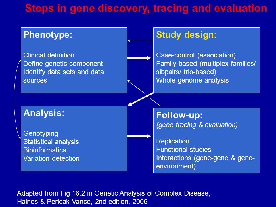 Phenotype: Clinical definition Define genetic component Identify data sets and data sources Follow-up: (gene tracing & evaluation) Replication Functional studies Interactions (gene-gene & gene- environment) Analysis: Genotyping Statistical analysis Bioinformatics Variation detection Study design: Case-control (association) Family-based (multiplex families/ sibpairs/ trio-based) Whole genome analysis Steps in gene discovery, tracing and evaluation Adapted from Fig 16.2 in Genetic Analysis of Complex Disease, Haines & Pericak-Vance, 2nd edition, 2006