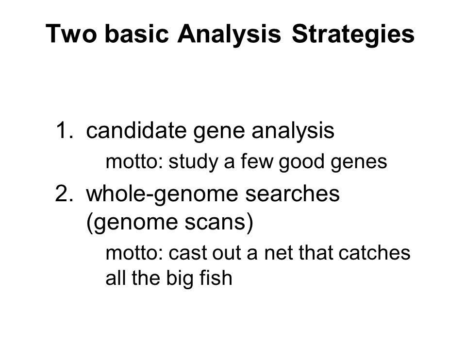 1.candidate gene analysis motto: study a few good genes 2.whole-genome searches (genome scans) motto: cast out a net that catches all the big fish Two basic Analysis Strategies