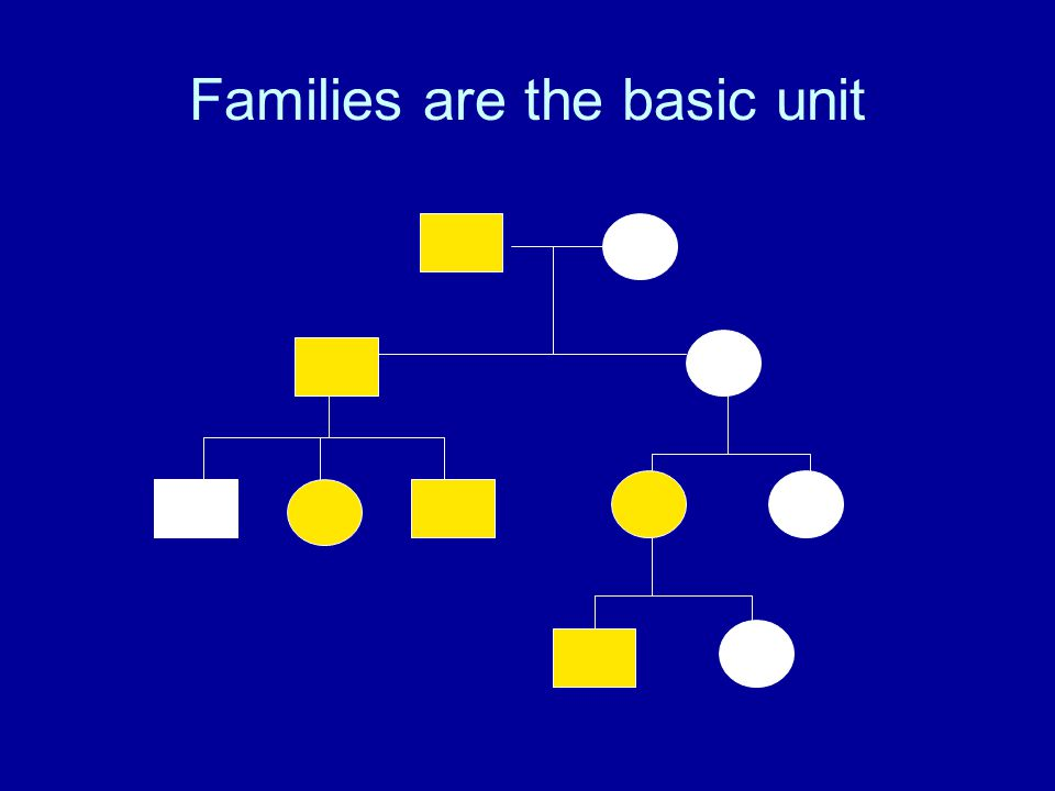 Families are the basic unit