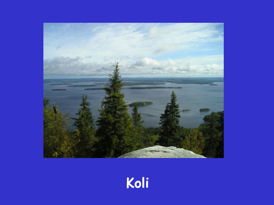 what a wonderful world (Koli)