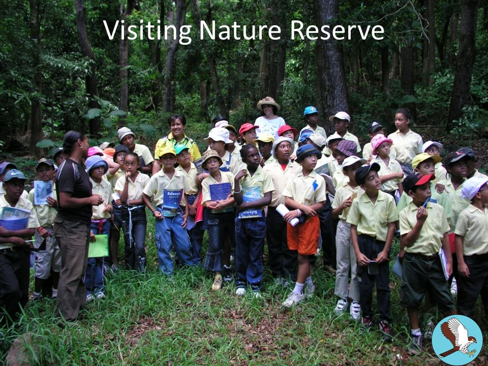 Visiting Nature Reserve