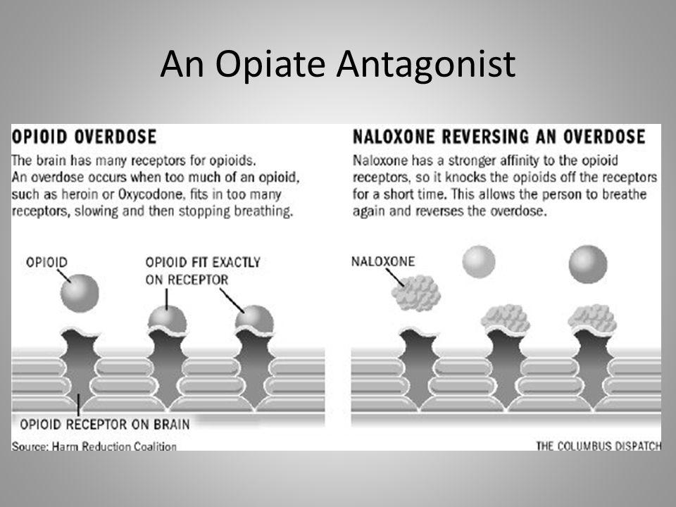 An Opiate Antagonist