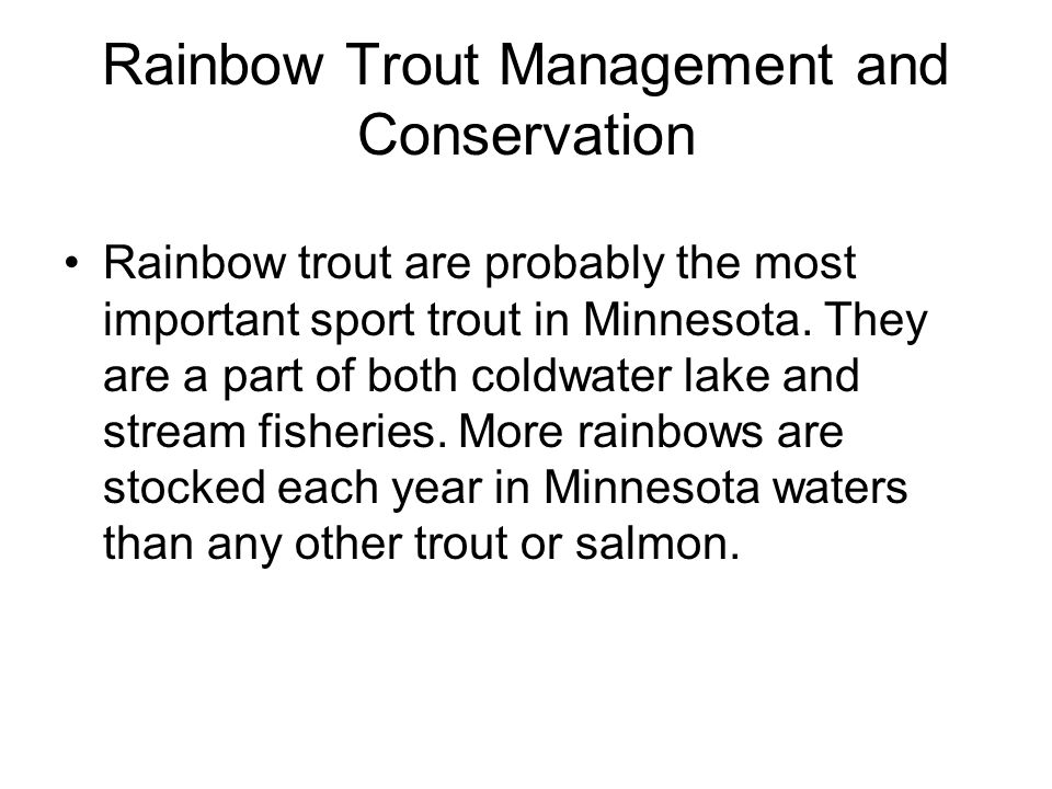 Rainbow Trout Management and Conservation Rainbow trout are probably the most important sport trout in Minnesota. They are a part of both coldwater la