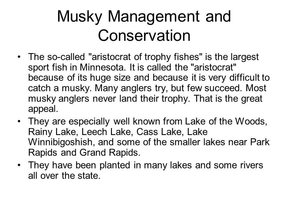 Musky Management and Conservation The so-called