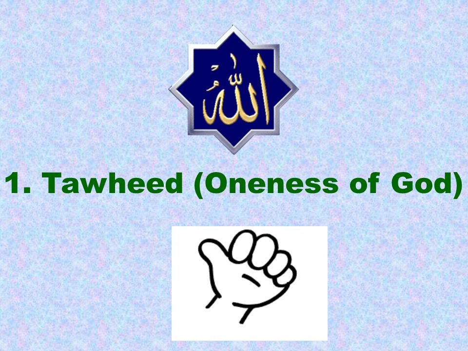 Tawheed means that Allah is One.He does not have any partner.