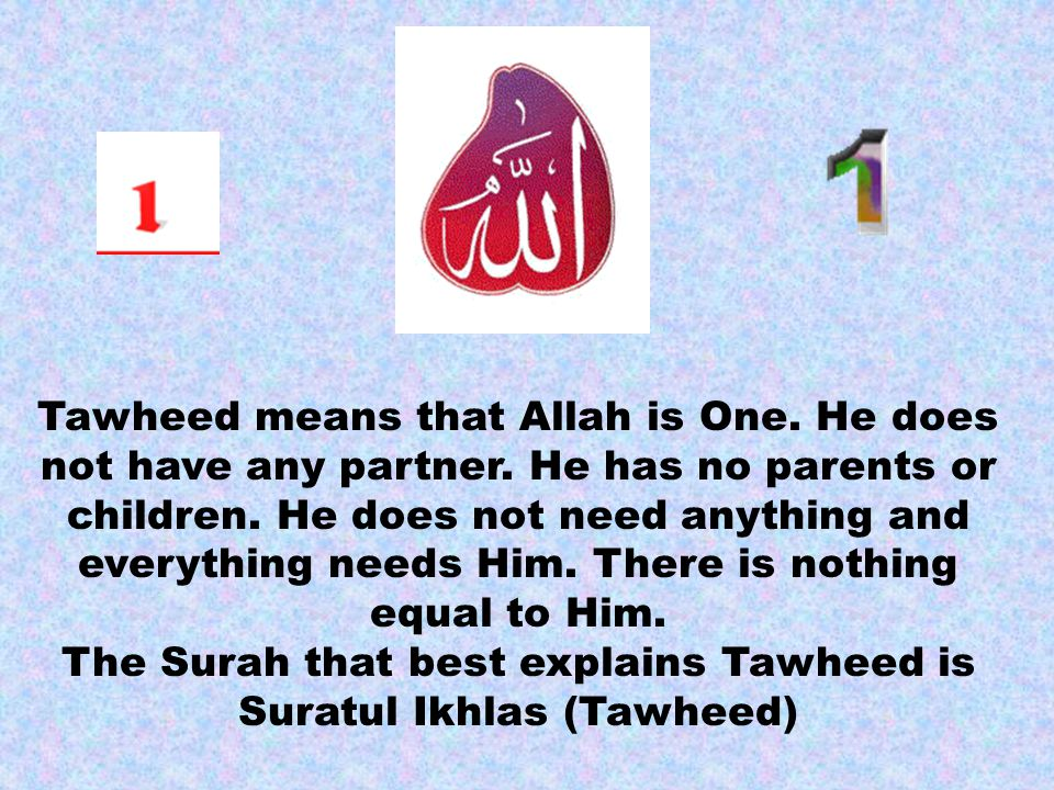 Tawheed means that Allah is One. He does not have any partner.