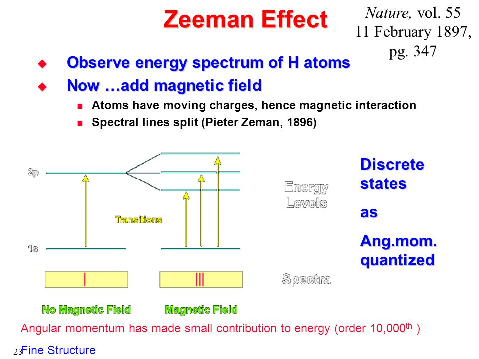23 Zeeman Effect  Observe energy spectrum of H atoms  Now …add magnetic field Atoms have moving charges, hence magnetic interaction Spectral lines split (Pieter Zeman, 1896) Angular momentum has made small contribution to energy (order 10,000 th ) Fine Structure Discrete states as Ang.mom.