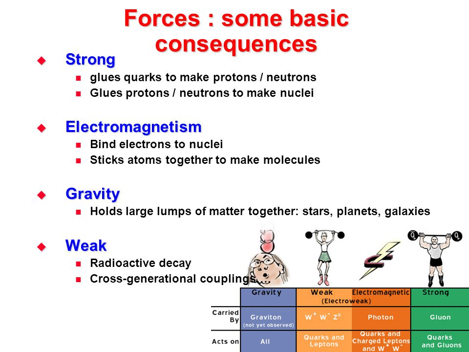 Forces : some basic consequences  Strong glues quarks to make protons / neutrons Glues protons / neutrons to make nuclei  Electromagnetism Bind elec