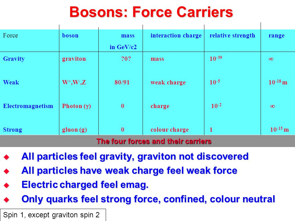 Bosons: Force Carriers  All particles feel gravity, graviton not discovered  All particles have weak charge feel weak force  Electric charged feel