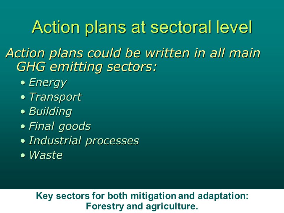 Economics Web Institute 14 Action plans at sectoral level Action plans could be written in all main GHG emitting sectors: EnergyEnergy TransportTransport BuildingBuilding Final goodsFinal goods Industrial processesIndustrial processes WasteWaste Key sectors for both mitigation and adaptation: Forestry and agriculture.