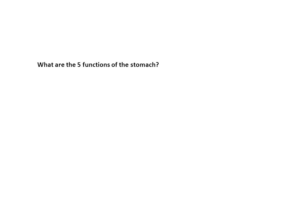 What are the 5 functions of the stomach?
