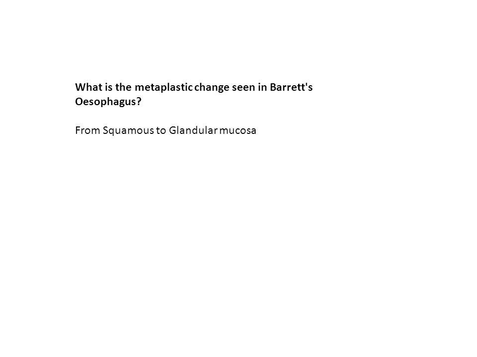 From Squamous to Glandular mucosa