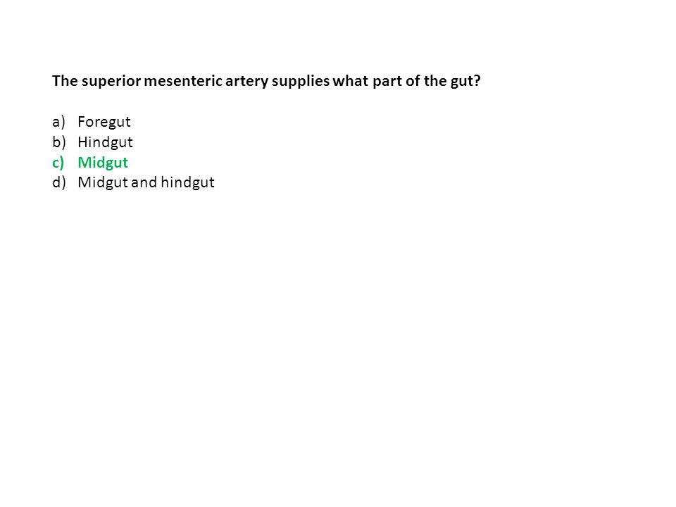 The superior mesenteric artery supplies what part of the gut? a)Foregut b)Hindgut c)Midgut d)Midgut and hindgut